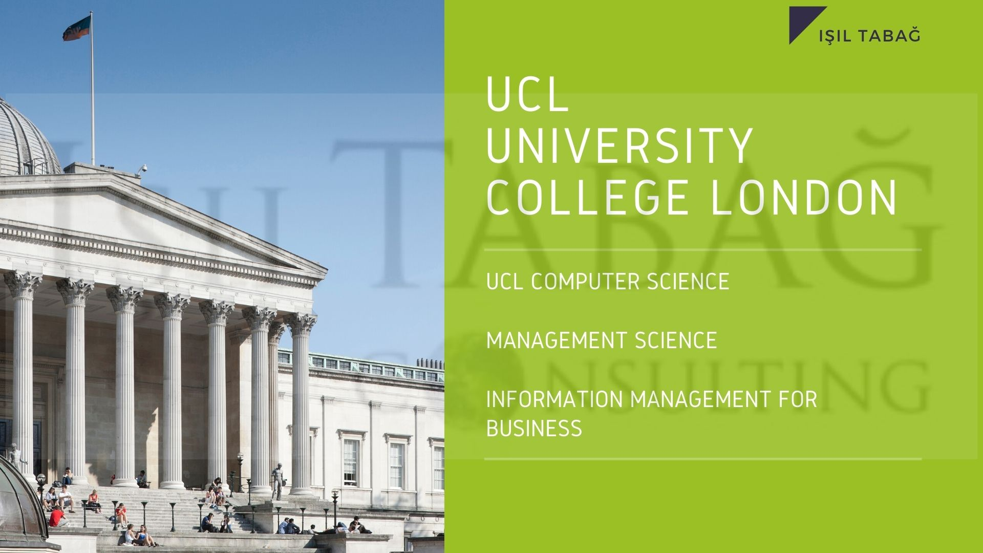 UCL Computer science  management science Information Management for Business Isil Tabag
